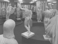4. ausstellungsraum der archäologischen sammlung im erdgeschoss der alten universitätsbibliothek